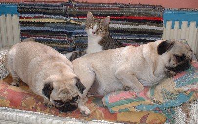 Sally, Moritz und Xenia...was für eine Liebe!!